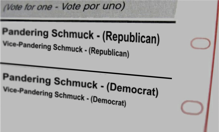 election-sheet