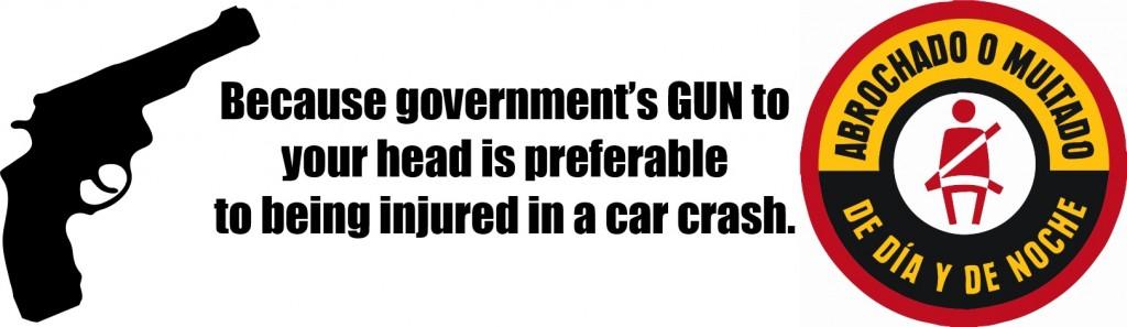 government-gun