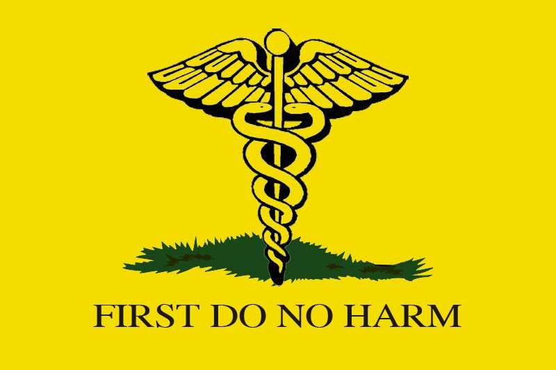 First Do No Harm Image