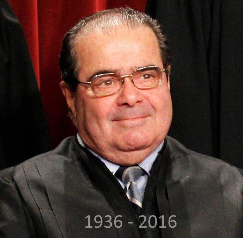 Scalia 1