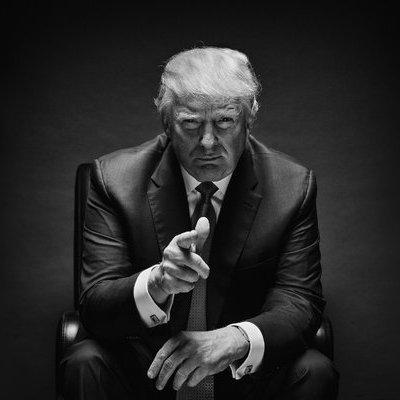 trump article opener